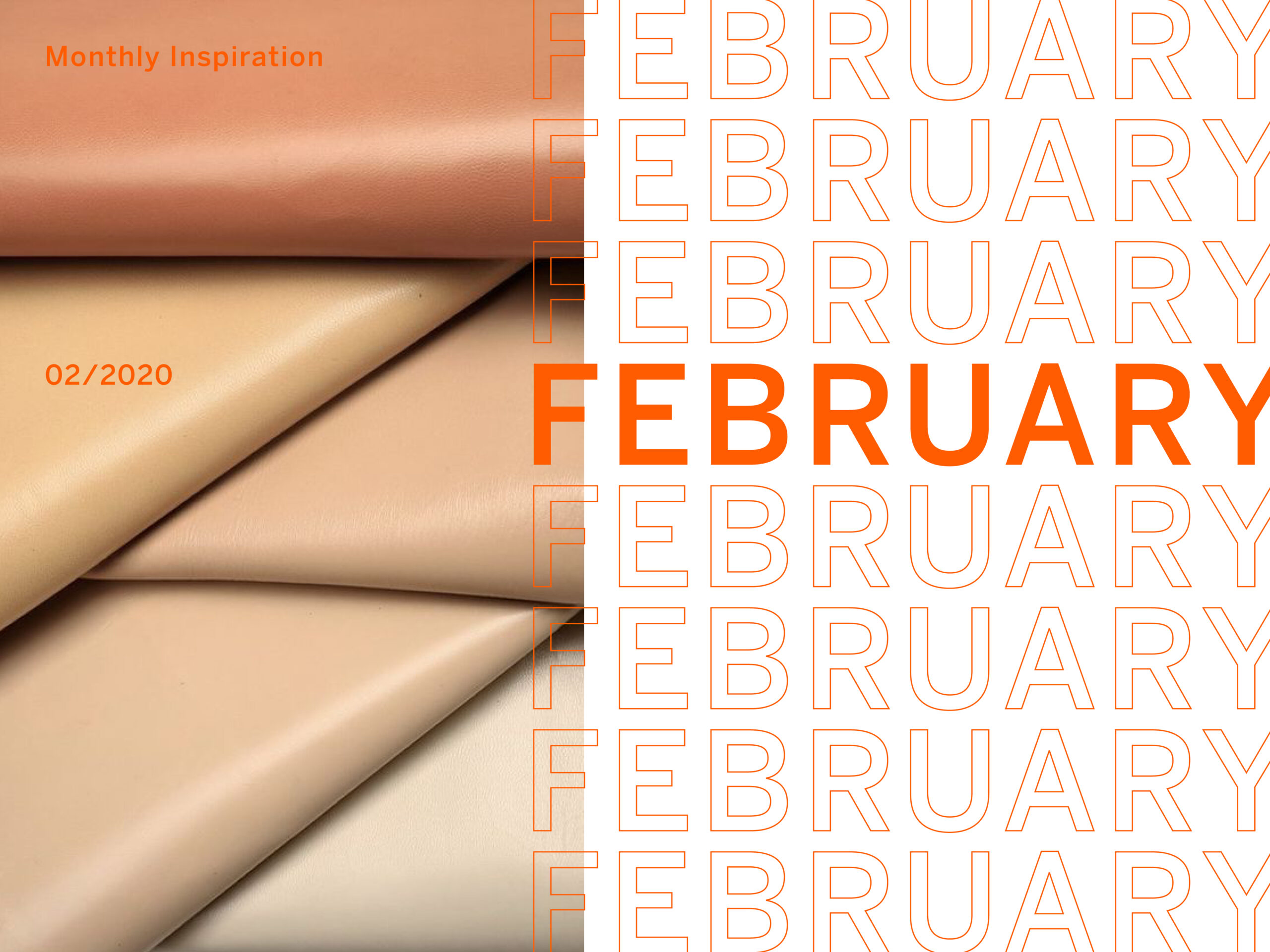 Monthly Inspiration: February